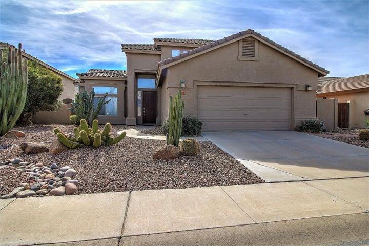 503 W MYRTLE Drive, Chandler, AZ 85248