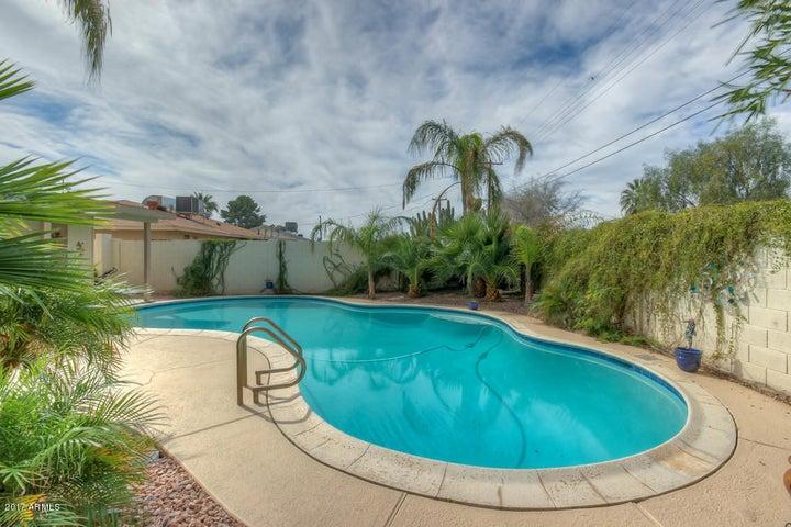 8302 E HOLLY Street, Scottsdale, AZ 85257