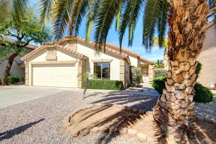 502 W DOUGLAS Avenue, Gilbert, AZ 85233
