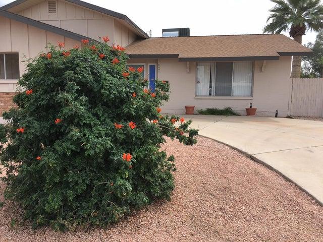 8401 E BONNIE ROSE Avenue, Scottsdale, AZ 85250