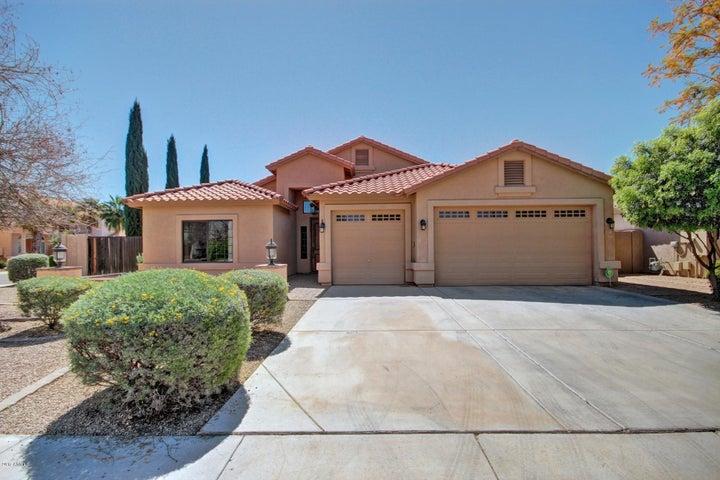 977 E Cedar Drive, Chandler, AZ 85249