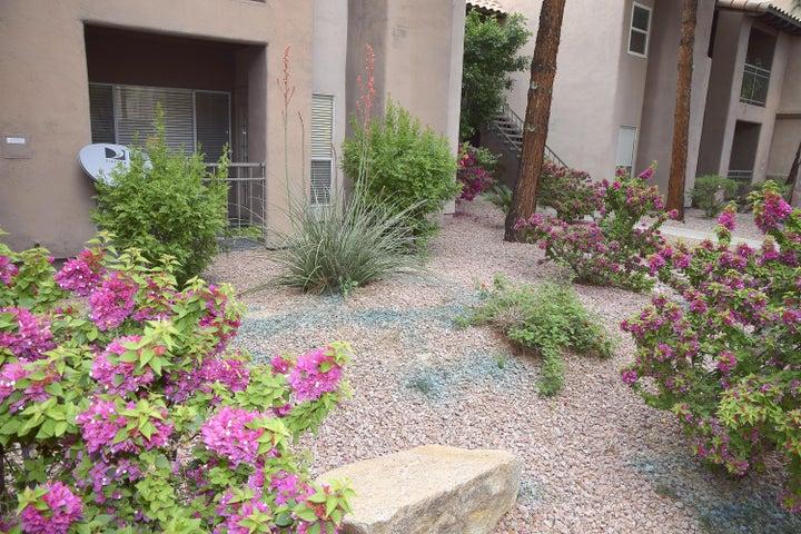 14145 N 92ND Street, 1148, Scottsdale, AZ 85260