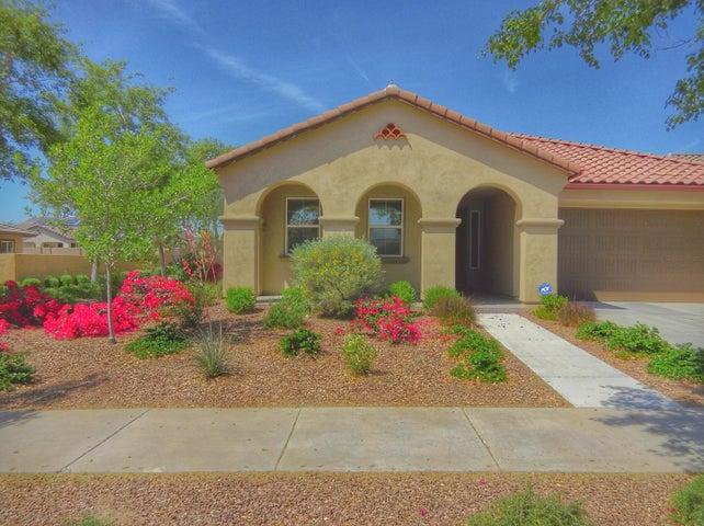 3226 N PARK Street, Buckeye, AZ 85396