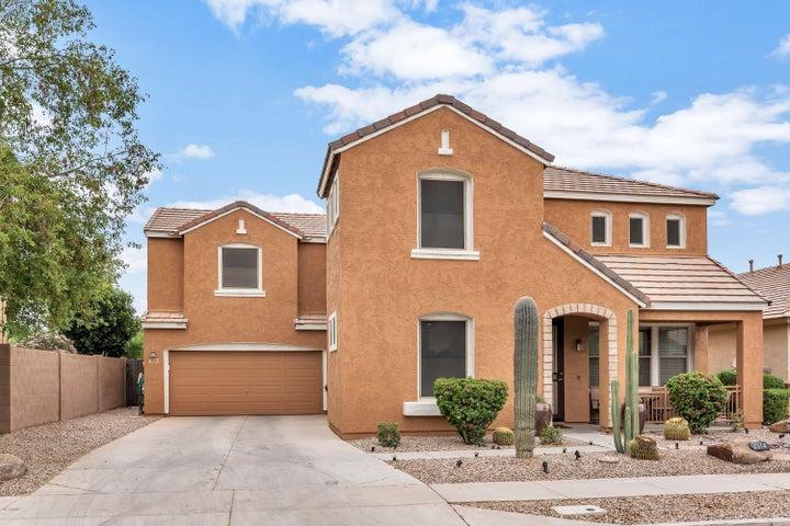 2974 S COLE Drive, Gilbert, AZ 85295