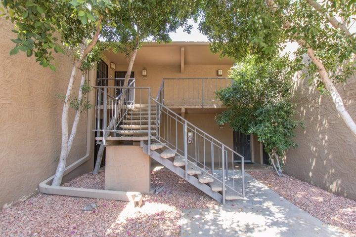 3825 E CAMELBACK Road, 235, Phoenix, AZ 85018