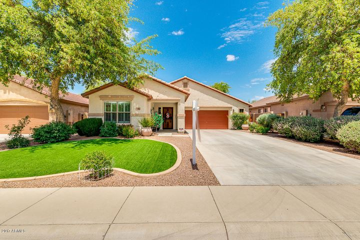 584 E Trellis Road, San Tan Valley, AZ 85140