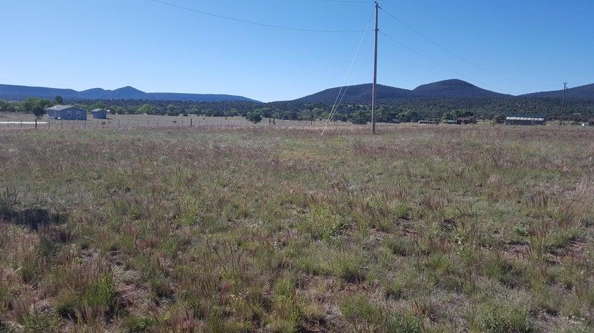 47223 N 288 Highway, B, Young, AZ 85554