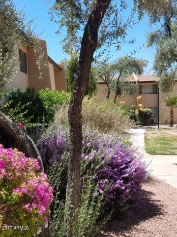 8055 E THOMAS Road, K103, Scottsdale, AZ 85251