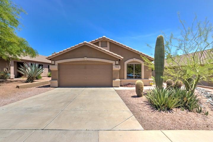 7513 E CHRISTMAS CHOLLA Drive, Scottsdale, AZ 85255