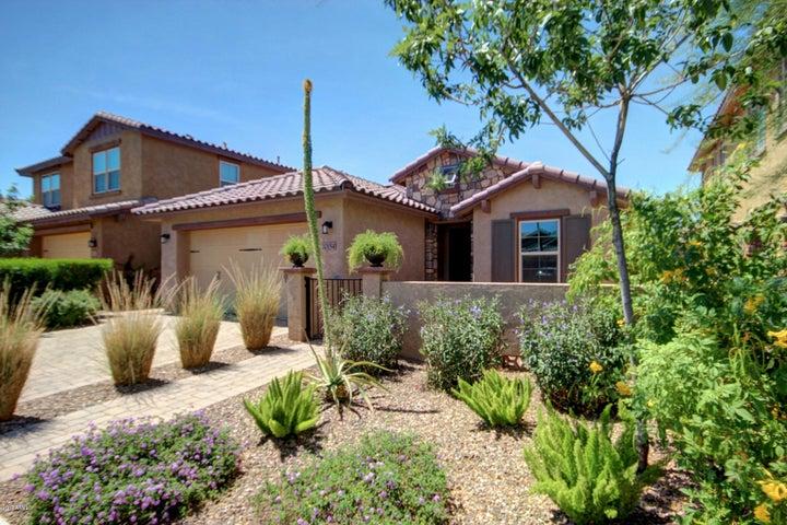 10154 E STARION Avenue, Mesa, AZ 85212