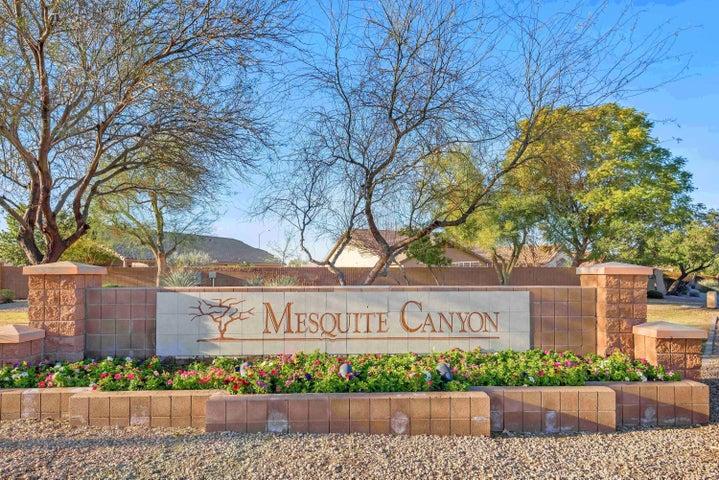 9819 E OLLA Avenue, Mesa, AZ 85212