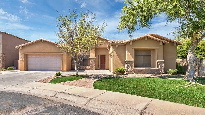 3374 E San Carlos Place, Chandler, AZ 85249