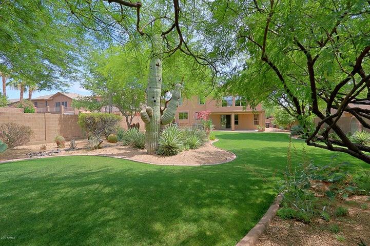 6026 E PALOMINO Lane, Scottsdale, AZ 85266
