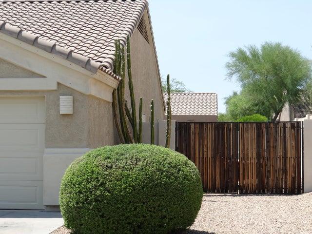 4856 E FERNWOOD Court, Cave Creek, AZ 85331