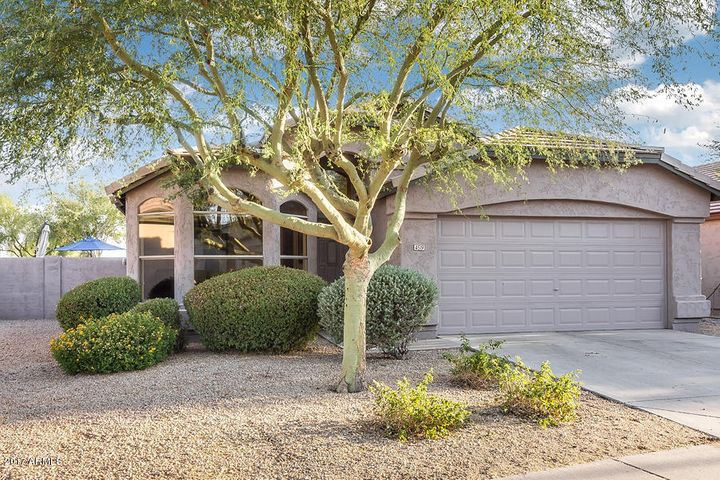 4519 E LONE CACTUS Drive, Phoenix, AZ 85050