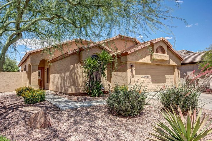 4412 E LONE CACTUS Drive, Phoenix, AZ 85050