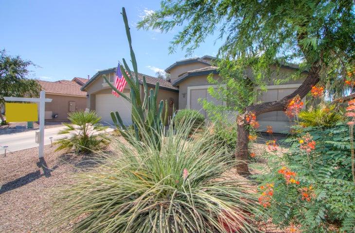 42241 W CHISHOLM Drive, Maricopa, AZ 85138