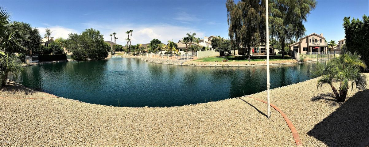 Backyard lake view