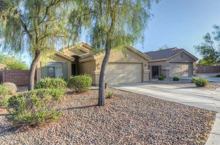12391 W DEVONSHIRE Avenue, Avondale, AZ 85392