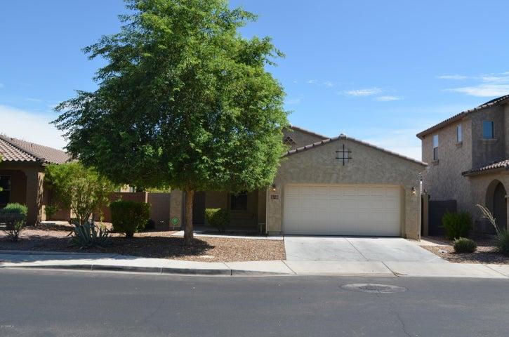 871 E JACOB Street, Chandler, AZ 85225