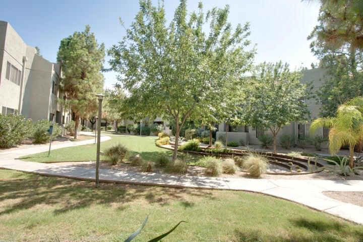 1295 N ASH Street, 317, Gilbert, AZ 85233
