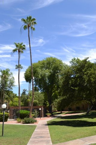 3825 E CAMELBACK Road, 102, Phoenix, AZ 85018