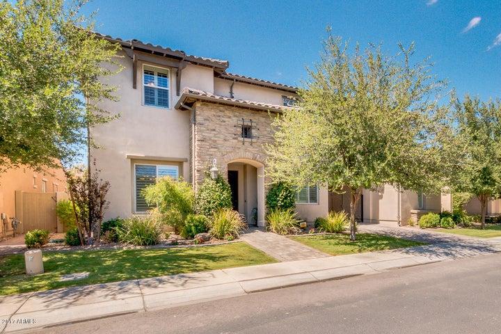 1136 W PRESCOTT Drive, Chandler, AZ 85248