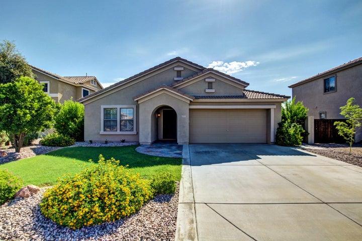 3775 S DANYELL Drive, Chandler, AZ 85286