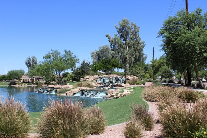 2446 E NARROWLEAF Drive, Gilbert, AZ 85298