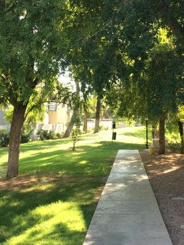 8020 E THOMAS Road, 115, Scottsdale, AZ 85251