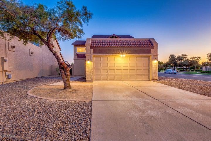 3637 W HARRISON Street, Chandler, AZ 85226