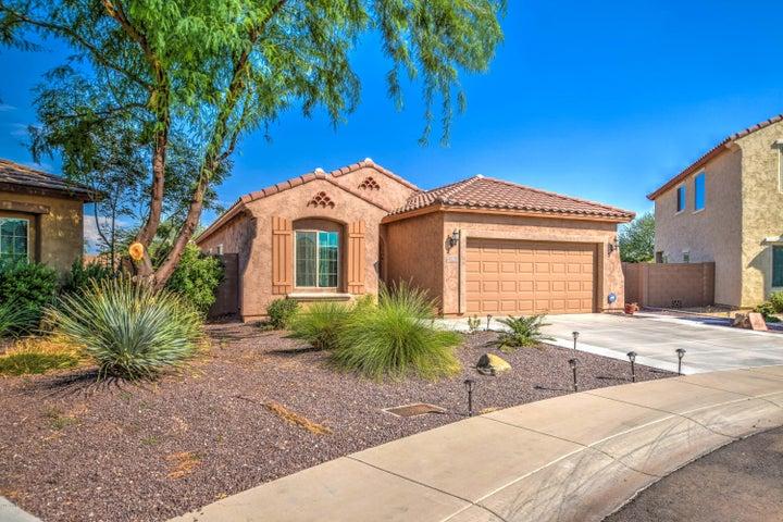 11135 E Santino Avenue, Mesa, AZ 85212