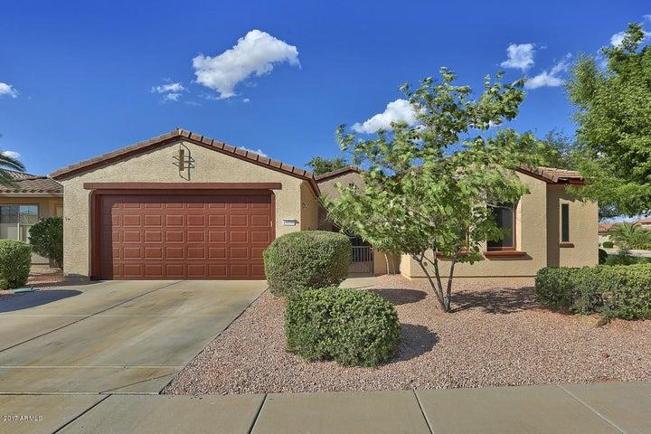 16538 W TORRANCE Lane, Surprise, AZ 85387