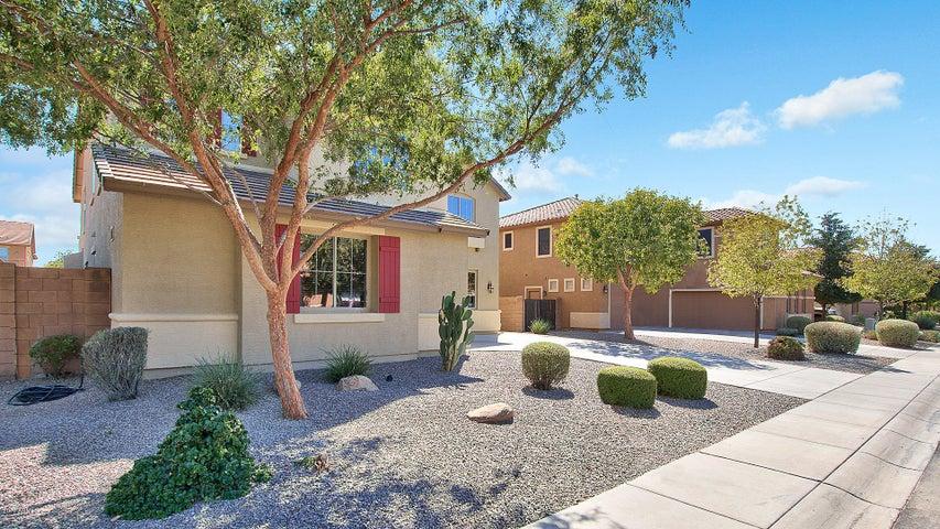 3655 E BLUEBIRD Place, Chandler, AZ 85286