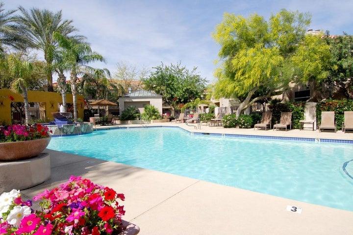 11375 E SAHUARO Drive, 2088, Scottsdale, AZ 85259