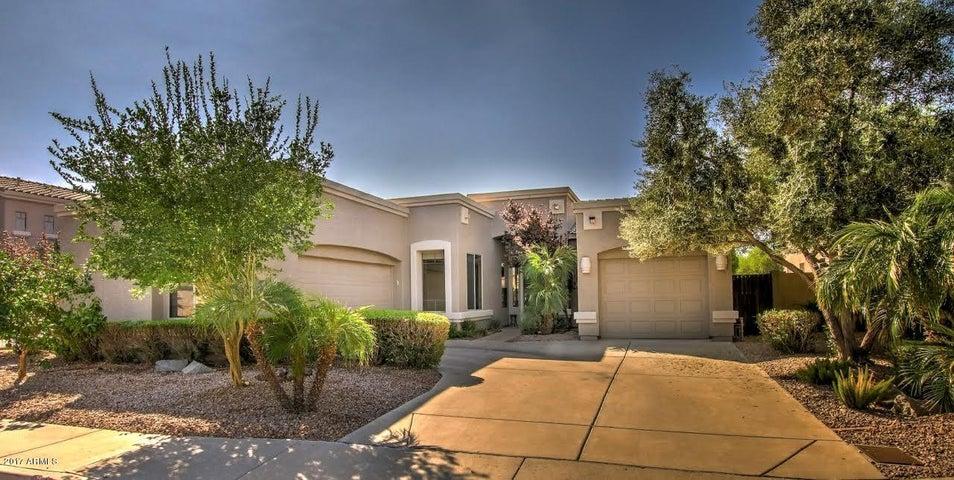 783 W EBONY Way, Chandler, AZ 85248