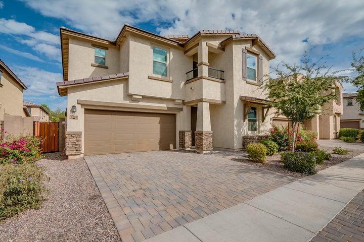 3000 E SHANNON Street, Gilbert, AZ 85295