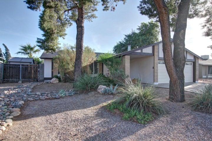 1411 W EL ALBA Way, Chandler, AZ 85224