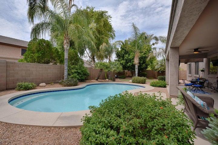 4529 E DARTMOUTH Street, Mesa, AZ 85205