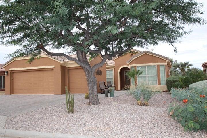6328 S PINALENO Place, Chandler, AZ 85249