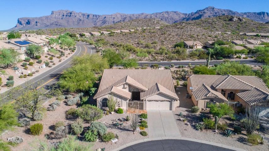 8110 E WOLFBERRY Circle, Gold Canyon, AZ 85118