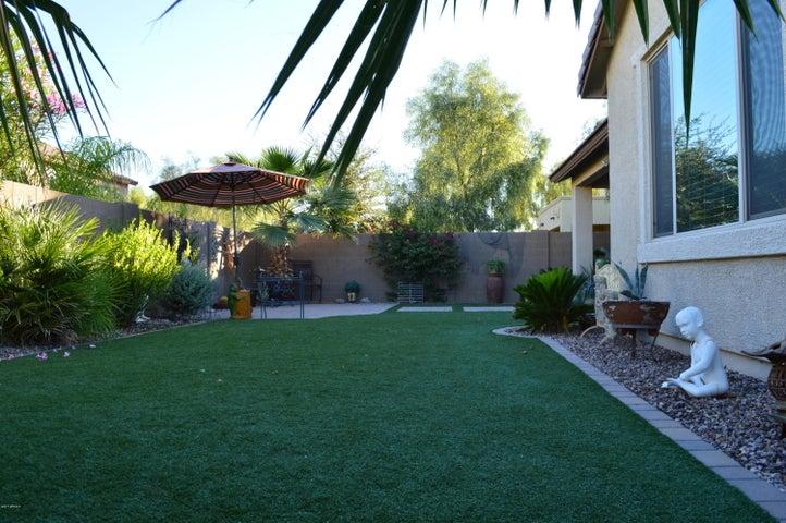Backyard synthesis grass