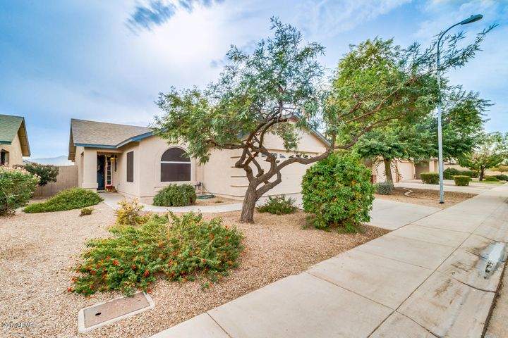 3039 W CHANUTE Pass, Phoenix, AZ 85041