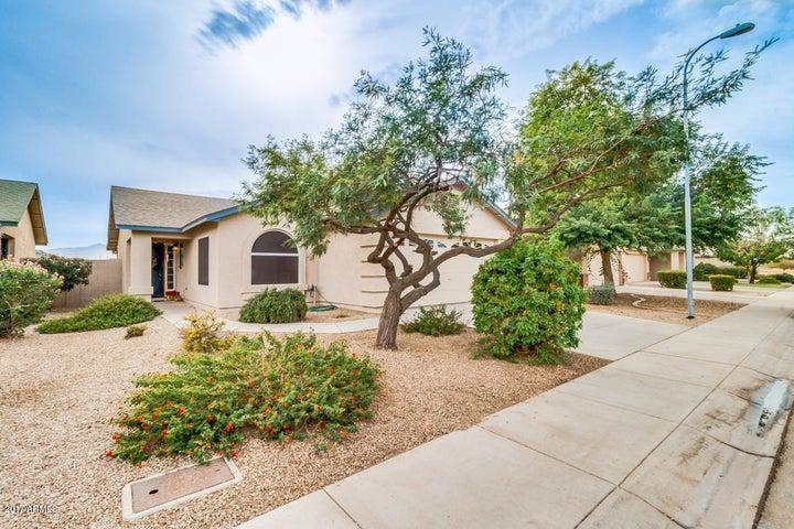 3039 W CHANUTE Pass, Phoenix, AZ 85041