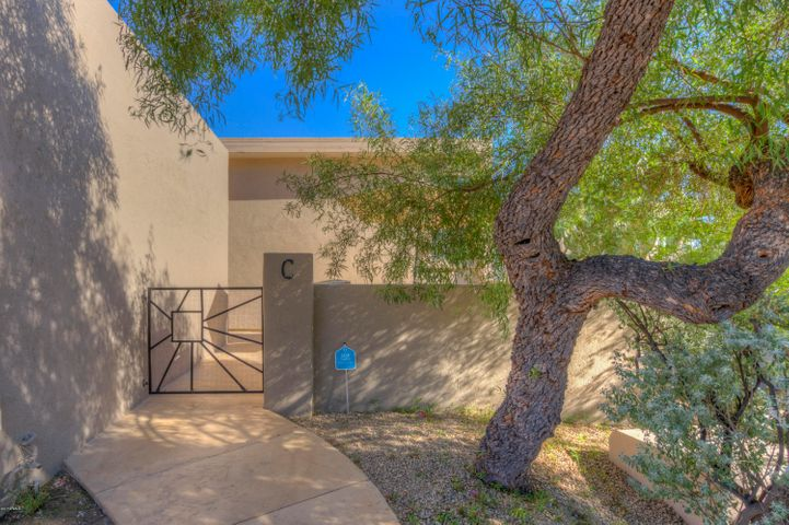 37300 N TOM DARLINGTON Drive, C, Carefree, AZ 85377