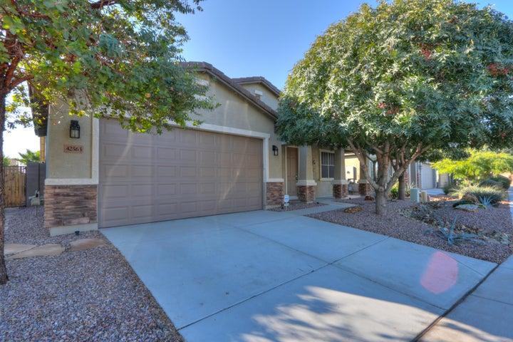 42563 W AVELLA Drive, Maricopa, AZ 85138