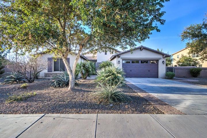 2625 E CAROB Drive, Gilbert, AZ 85298
