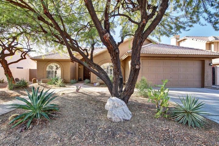913 E Verbena Drive, Phoenix, AZ 85048