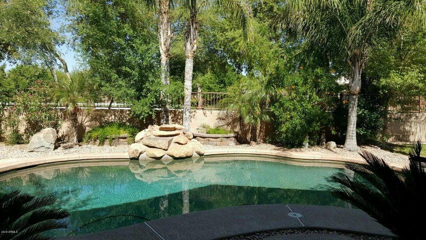 Tropical backyard. Nice pebble tec pool with waterfall