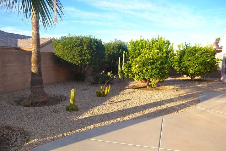 private backyard no HOA